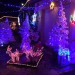 Décoration jardin pour Noël